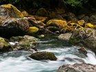 EPA takes step toward repealing clean water rule