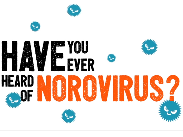What is the norovirus-